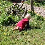 Wochenende mit Kindern auf dem Land