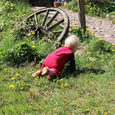Bauerhofurlaub kinder