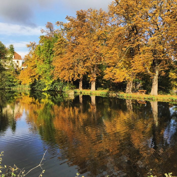 landal-green-parks-harz-urlaub-mit-kindern11