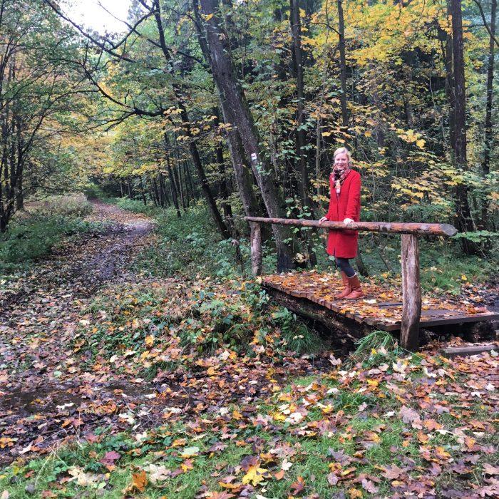 landal-green-parks-harz-urlaub-mit-kindern3