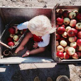 Selbstgemachte Geschenke von Kindern – Bratapfelmarmelade