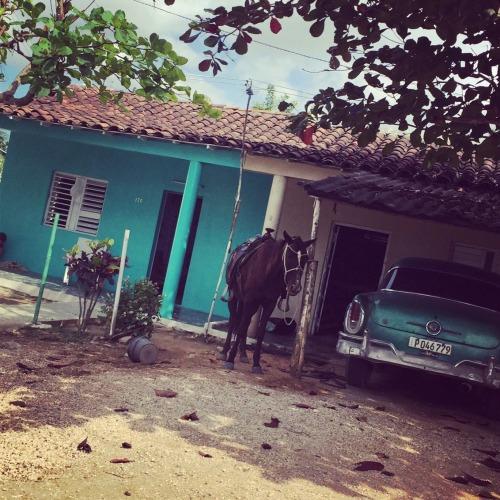 cuba_horse_car