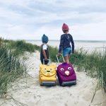 Egal ob Urlaub in Australien oder Holland: Worauf wir achten und tolle neue Reisebegleitern