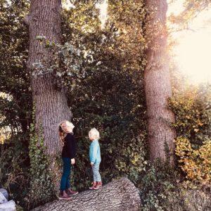 Unser Herbst – Drachen basteln, Kürbissuppe & warme, gemütliche Kinderkleidung
