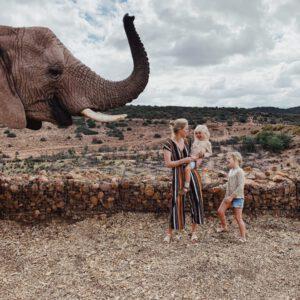 Unsere Südafrika Reise – Safari mit kleinen Kindern