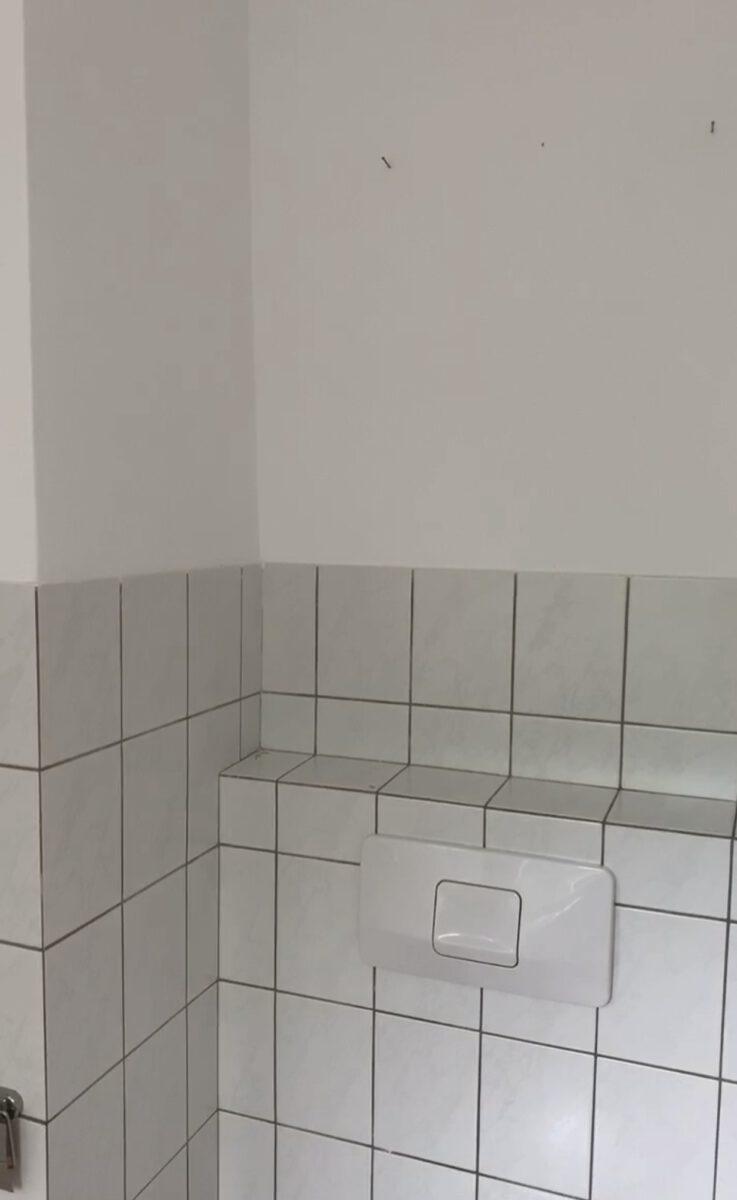 Unser Badezimmer-Makeover mit kleinem Budget - SarahPlusDrei